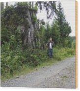 One Big Stump Wood Print