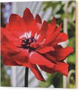 One Last Flower Wood Print