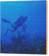 One Man Scuba Diving On Coral Reef Wood Print