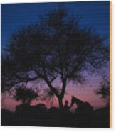 Evening In Rajasthan Wood Print