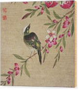 One Of A Series Of Paintings Of Birds And Fruit, Late 19th Century Wood Print