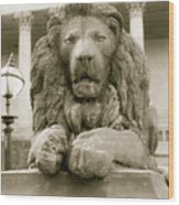 One Of Four Lion Statues Outside St George's Hall Liverpool Wood Print