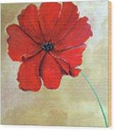 One Poppy Wood Print