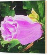 One Pretty Flower Wood Print