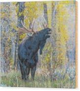 One Proud Bull Moose Wood Print