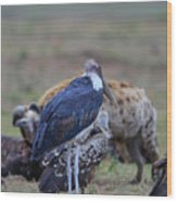 One Stork Wood Print