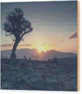 One Tree And Sunset Wood Print
