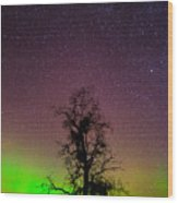 One Tree One Night On The Palouse Wood Print
