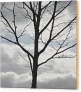 One Winter Tree With Clouds Wood Print
