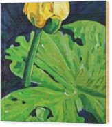 One Yellow Lily Wood Print
