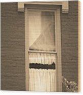 Jonesborough Tennessee - One Window Wood Print