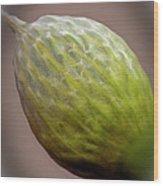Onion Flower Macro Wood Print