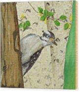 Onlooker Wood Print