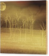 Only At Night Wood Print