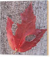 Only One Leaf To Live Wood Print
