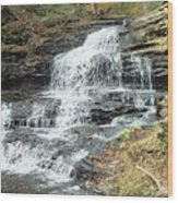 Onondaga 6 - Ricketts Glen Wood Print
