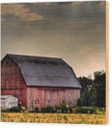 Ontario Barn In The Sun Wood Print