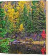 Ontario Tarn Wood Print
