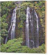 Opaekaa Falls - Kauai Wood Print