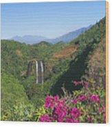 Opaekaa Falls Wood Print