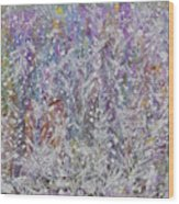 Opalescent Wood Print by Don  Wright
