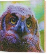 Opalescent Owl Wood Print