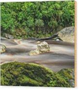 Oparara River Wood Print