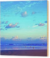Open Beach Ponce Inlet Atlantic Ocean Wood Print