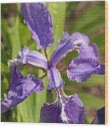 Open Flower Wood Print