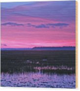 Open Marsh Wood Print
