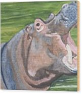 Open Mouthed Hippo On Wood Wood Print