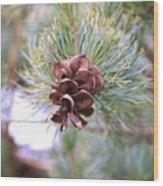 Open Pine Cone Wood Print