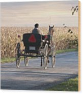 Open Road Open Buggy Wood Print by David Arment