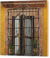 Open Window In Ochre Wood Print