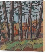 Opinicon November Forest Wood Print