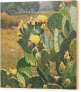 Opuntia In Bloom Wood Print