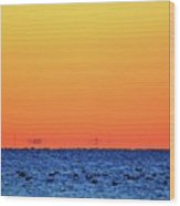 Orange And Blue Morning 2  Wood Print