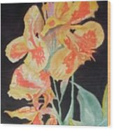 Orange And Yellow Canna Lily On Black Wood Print