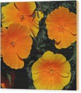 Orange And Yellow Flowers Wood Print