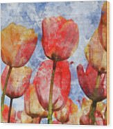 Orange And Yellow Tullips With Blue Sky Wood Print