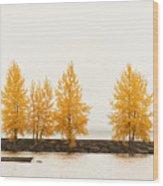 Orange Autumn Wood Print