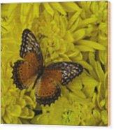 Orange Butterfly On Yellow Mums Wood Print
