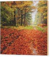 Orange Carpet Wood Print