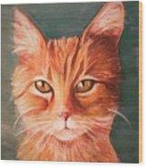 Orange Cat Wood Print