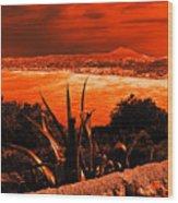 Orange Coast Wood Print