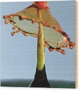 Orange Crown 3 Wood Print