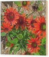Orange Days Wood Print