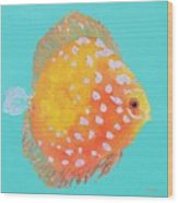 Orange Discus Fish With Purple Spots Wood Print