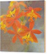 Orange Dream Wood Print