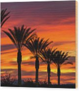 Orange Dream Palm Sunset  Wood Print